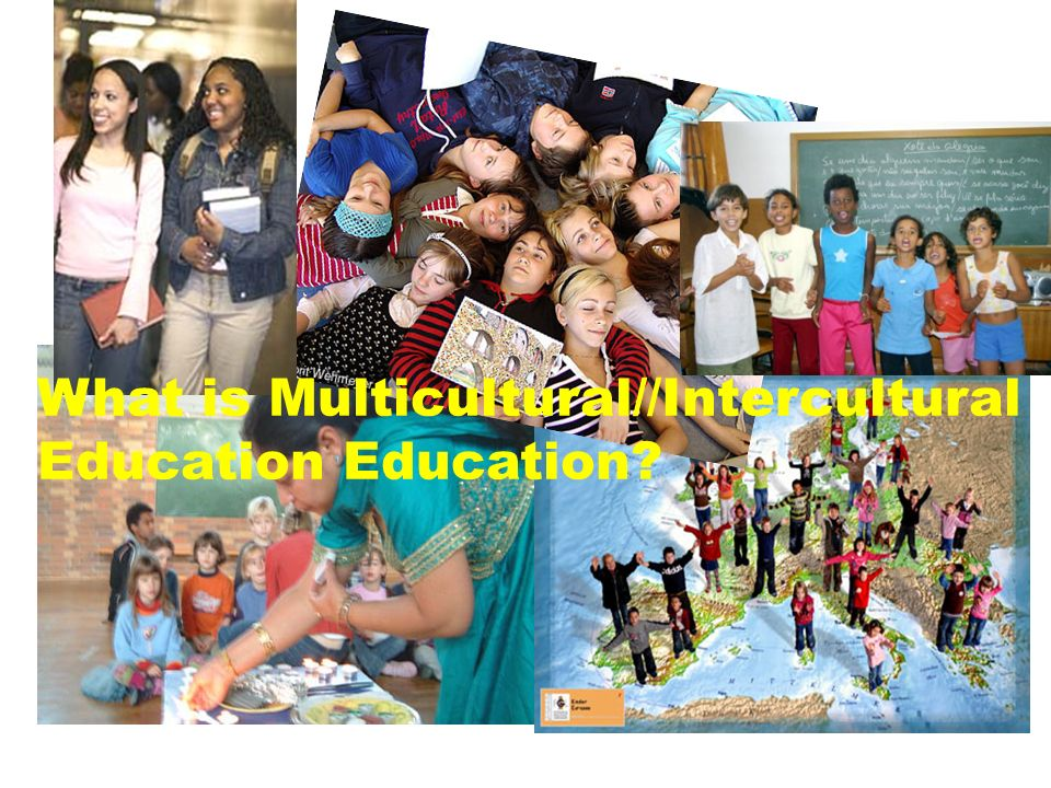 What is Multicultural//Intercultural