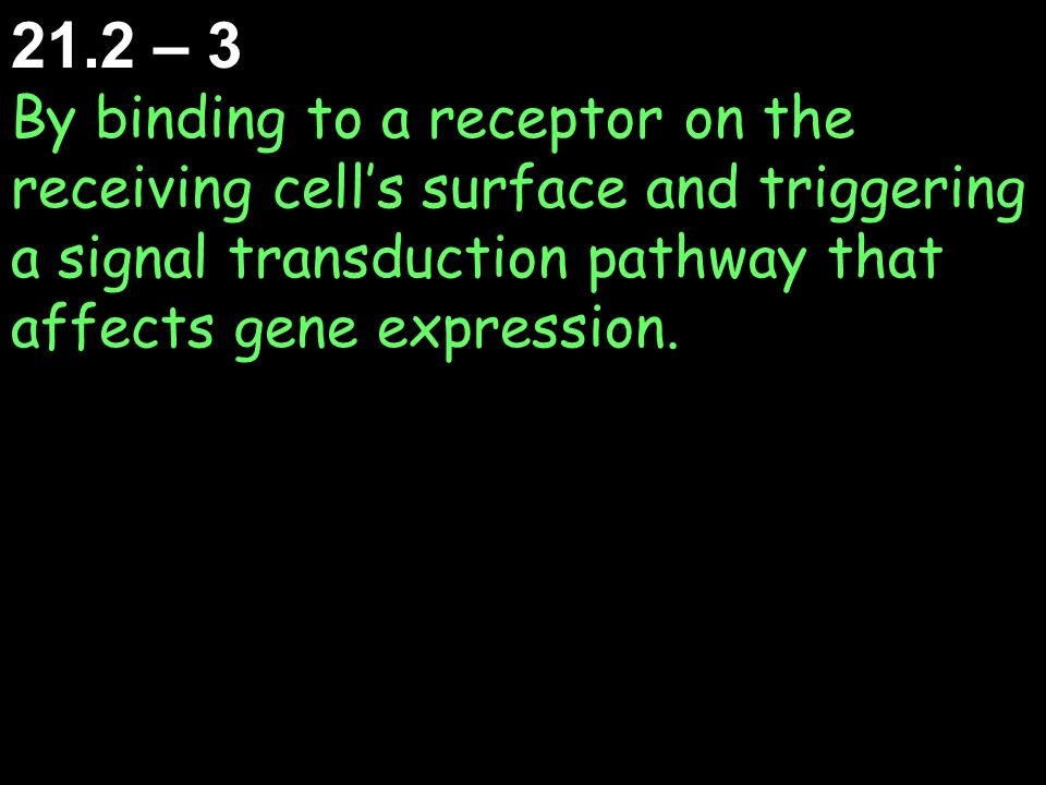 21.2 – 3 By binding to a receptor on the receiving cell's surface and triggering a signal transduction pathway that affects gene expression.