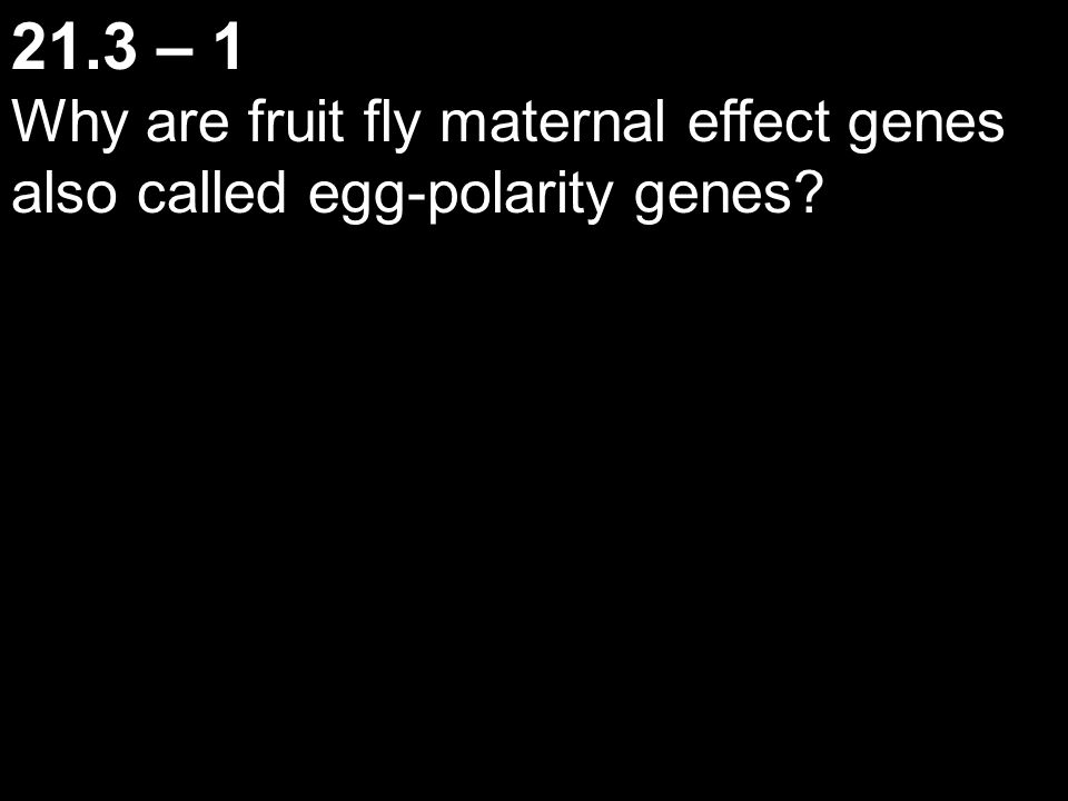 21.3 – 1 Why are fruit fly maternal effect genes also called egg-polarity genes