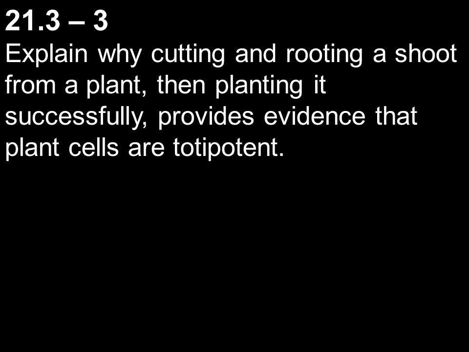 21.3 – 3 Explain why cutting and rooting a shoot from a plant, then planting it successfully, provides evidence that plant cells are totipotent.