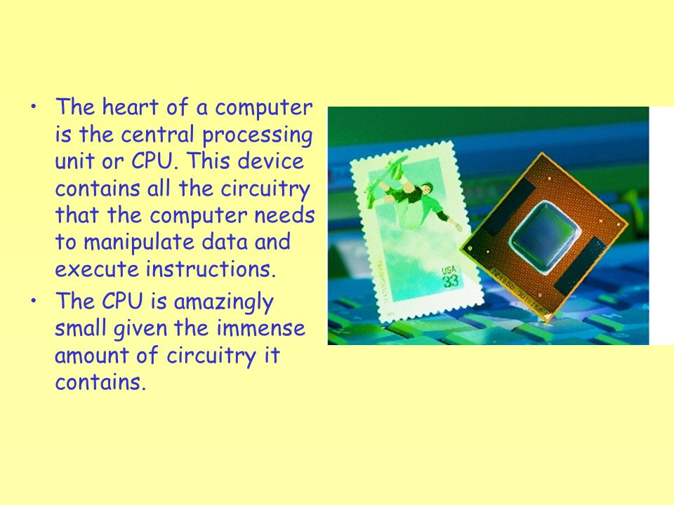 processor is the heart of the computer This little chip is the heart of a computer also referred to as the microprocessor, the processor does all the computations such as adding.