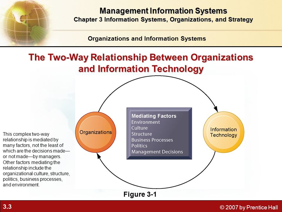 managing information systems in organizations essay