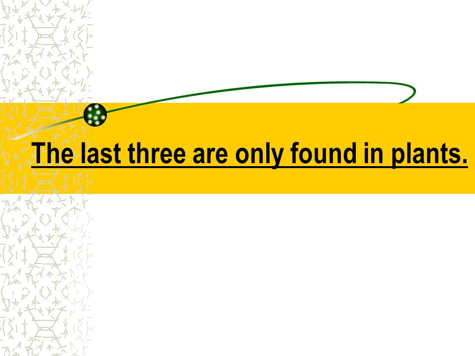 The last three are only found in plants.