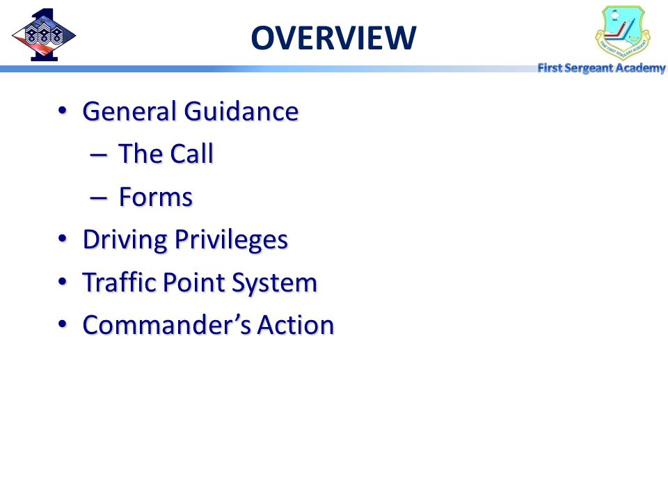 OVERVIEW General Guidance The Call Forms Driving Privileges