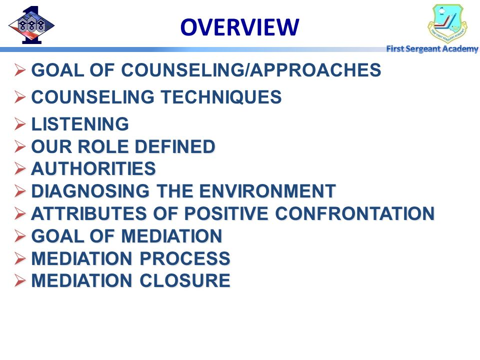 OVERVIEW GOAL OF COUNSELING/APPROACHES COUNSELING TECHNIQUES LISTENING