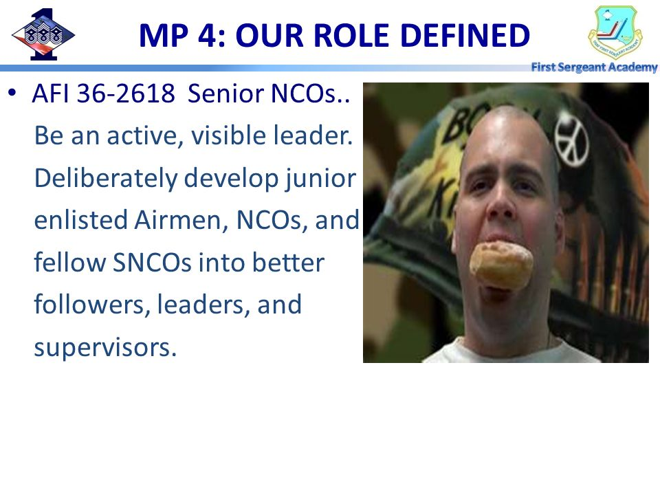 MP 4: OUR ROLE DEFINED AFI 36-2618 Senior NCOs..