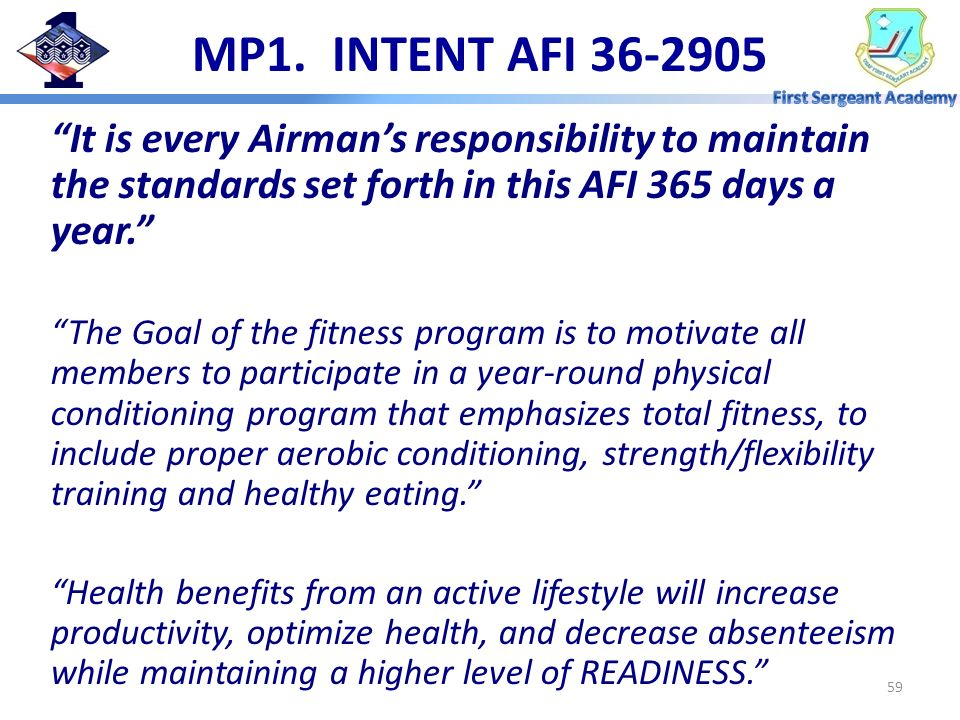 MP1. INTENT AFI 36-2905 It is every Airman's responsibility to maintain the standards set forth in this AFI 365 days a year.