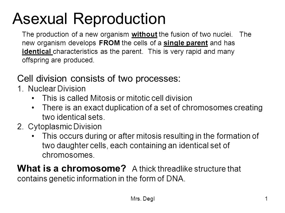 Cell division for asexual reproduction