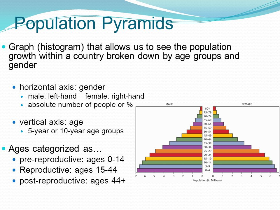 Population Pyramids Graph (histogram) that allows us to see the population growth within a country broken down by age groups and gender.