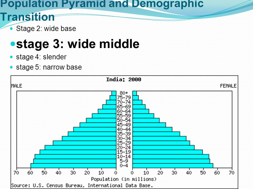 Population Pyramid and Demographic Transition