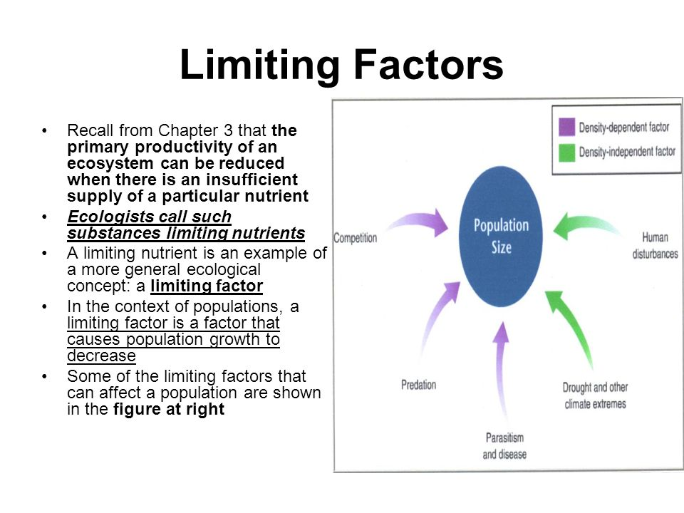 factors afffecting the decrease population in Factors affecting demand  on the other hand, if a new health study comes out saying something is bad for your health, this may decrease the demand for the product.