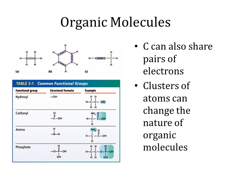 Organic Molecules C can also share pairs of electrons