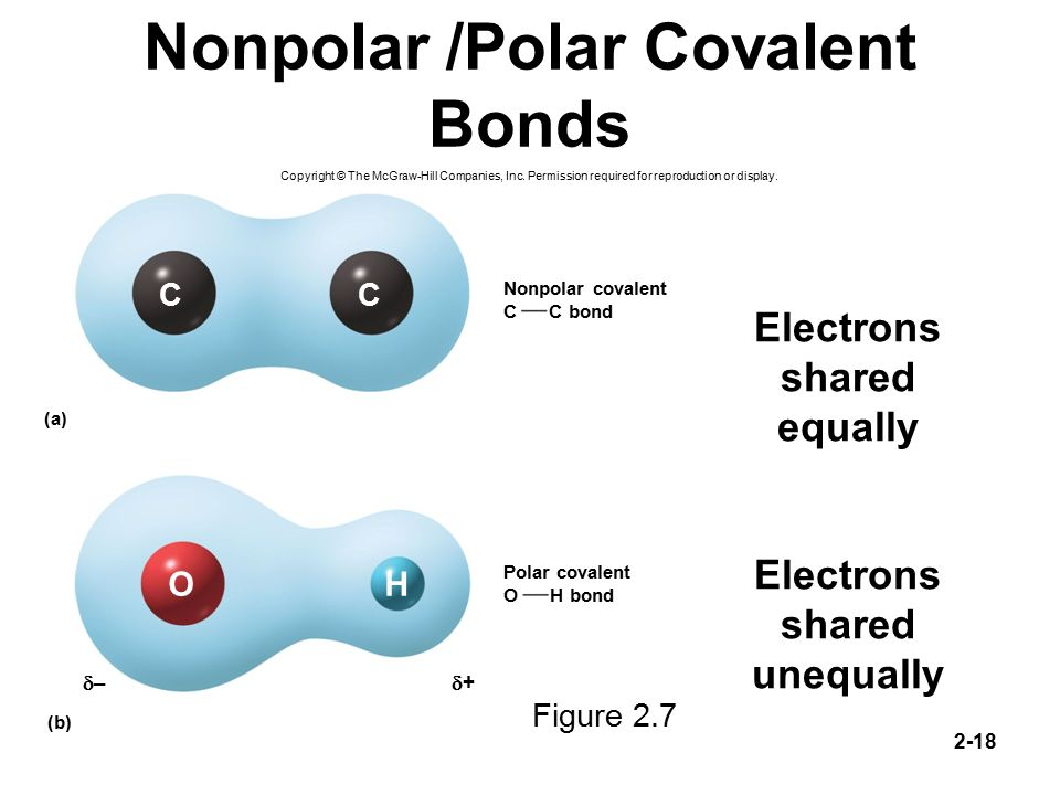 Chapter 2 Lecture Outl... Nonpolar Covalent Bond Examples