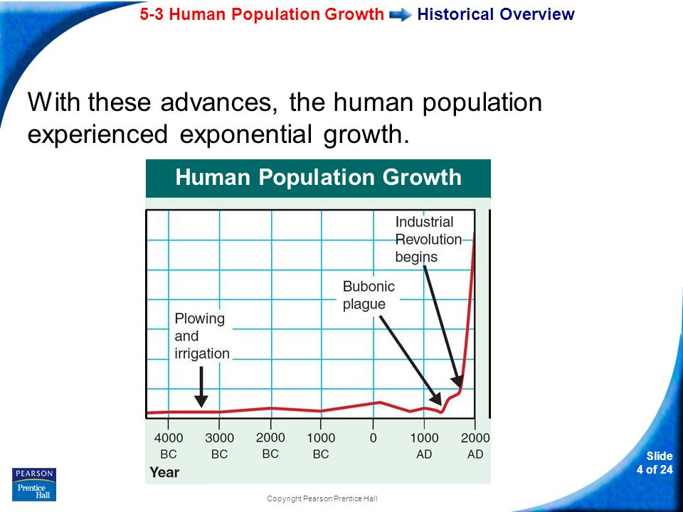An analysis of the human population growth