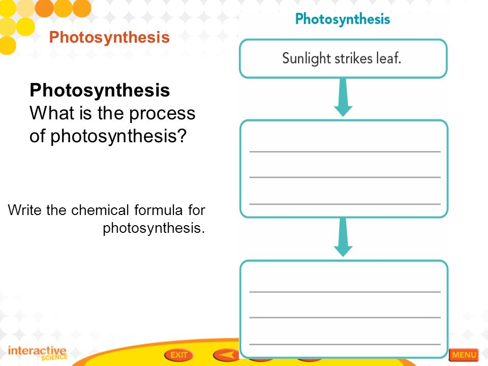 what is the process of photosynthesis The process by which plants make food is called photosynthesis the word photosynthesis is made up of two words: photo = light synthesis = putting together.