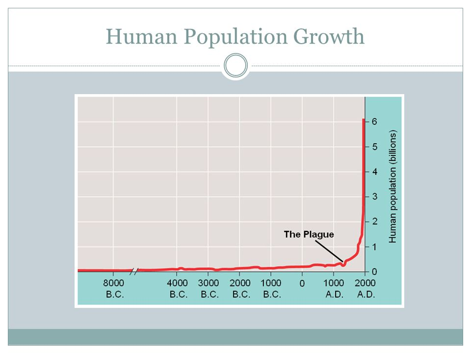 essay on human population increases but humanity