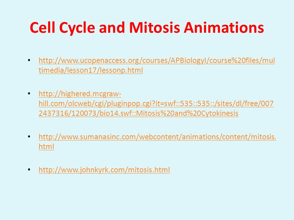Cell Cycle and Mitosis Animations