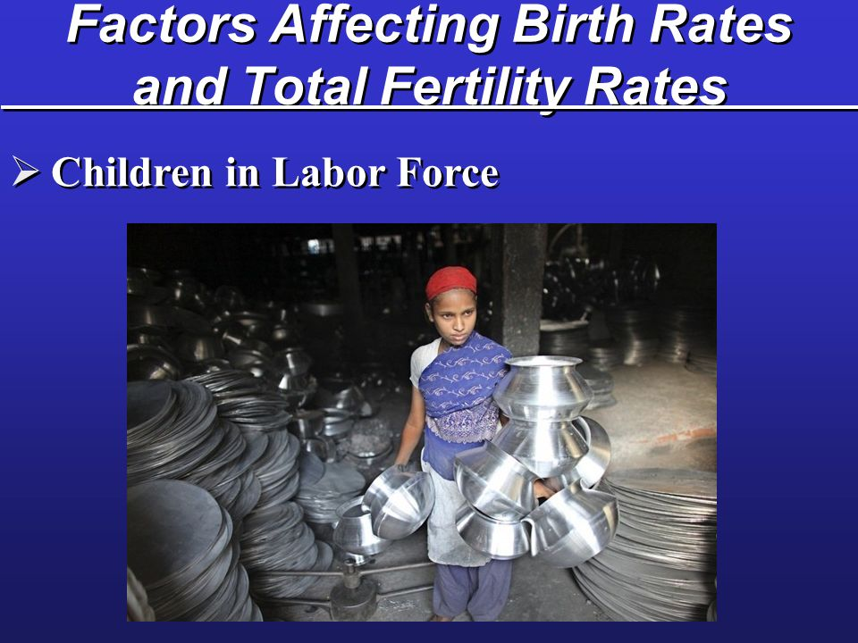 Factors Affecting Birth Rates and Total Fertility Rates