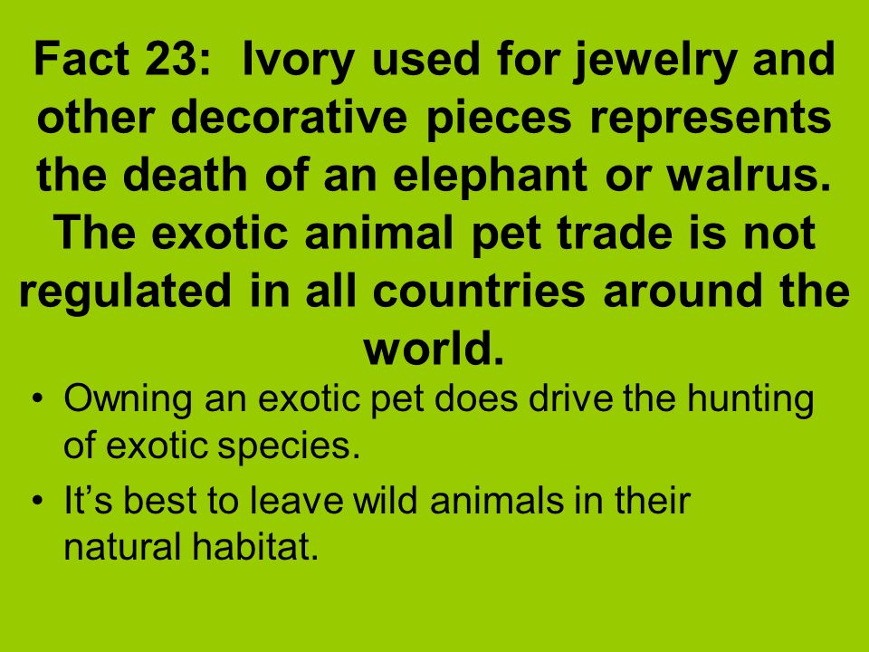 Ecology facts every day a different fact will be on the for Fun facts about countries around the world