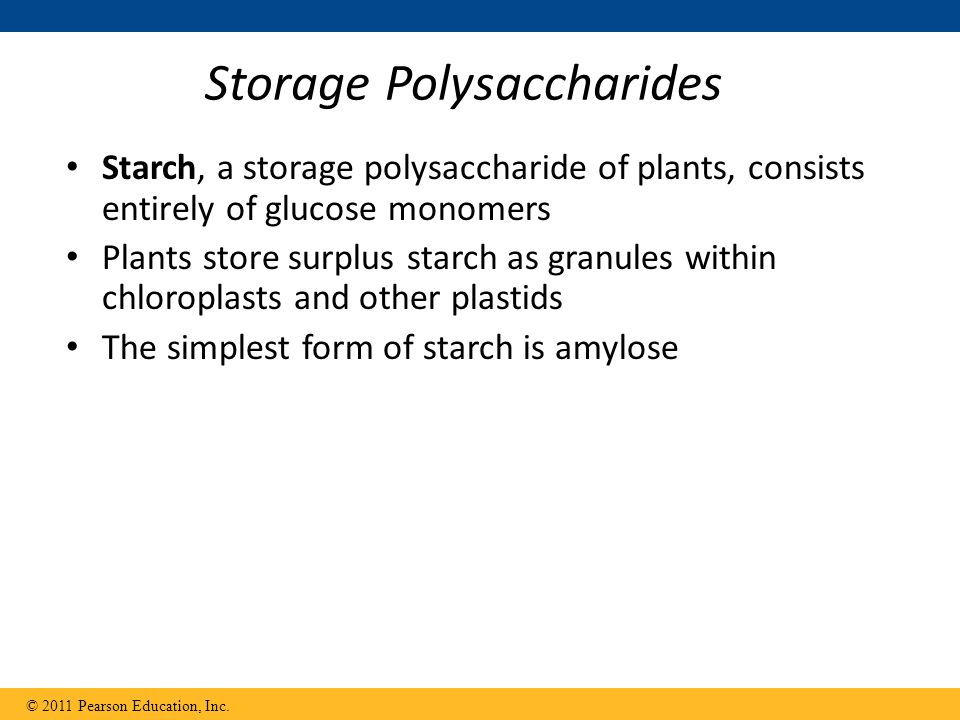 Overview: The Molecules of Life - ppt download