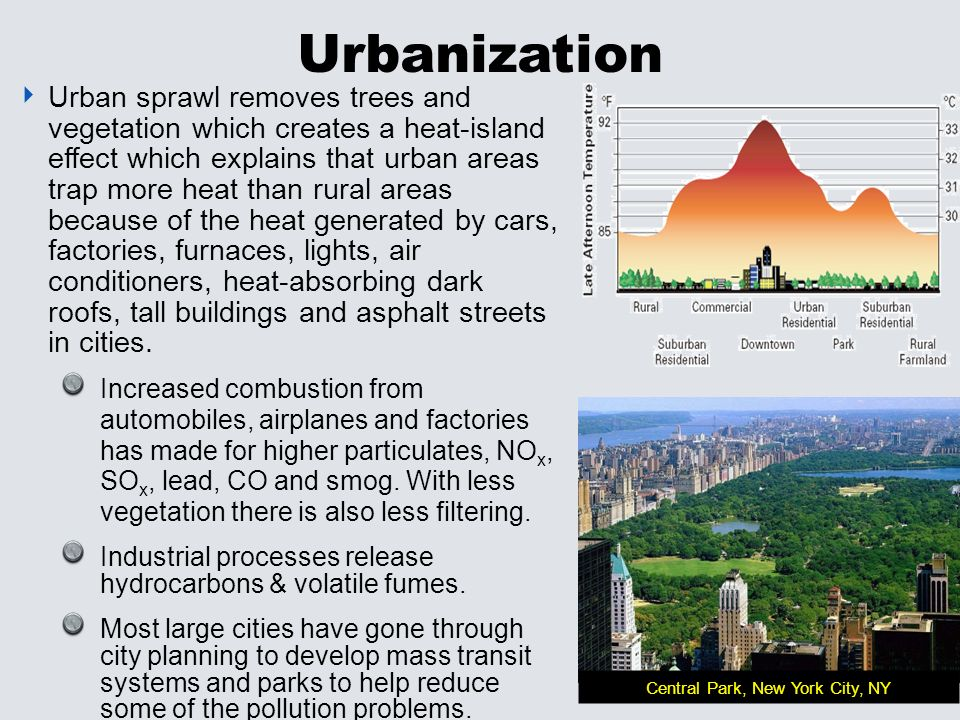 Urban and rural areas essay