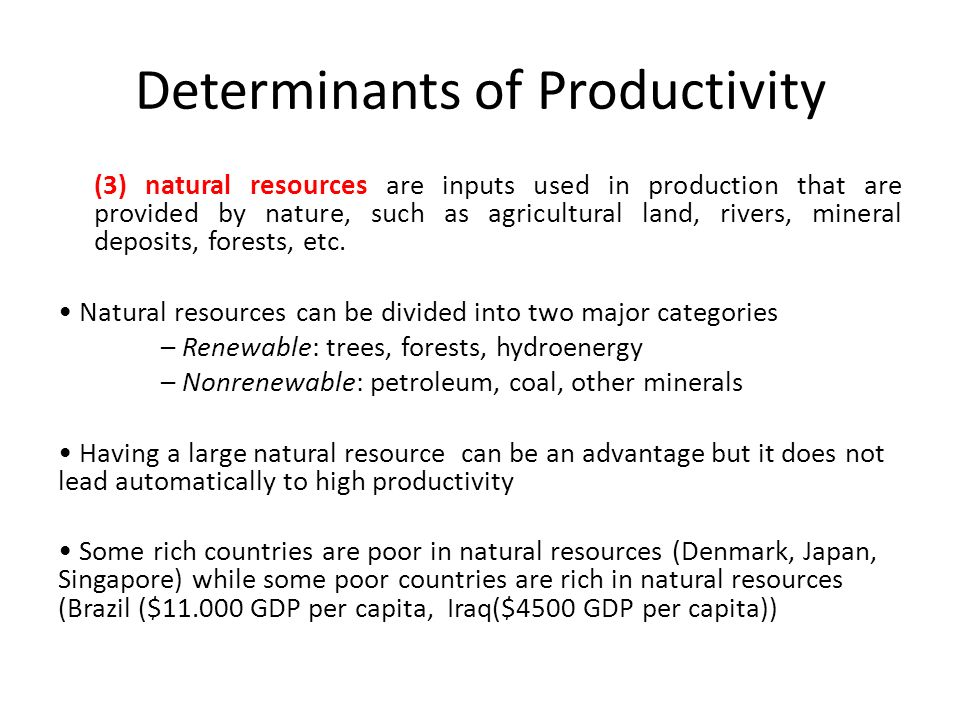 determinants of total factor productivity