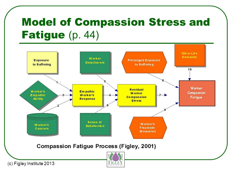Compassionate Competence: A New Model for Social Work Practice