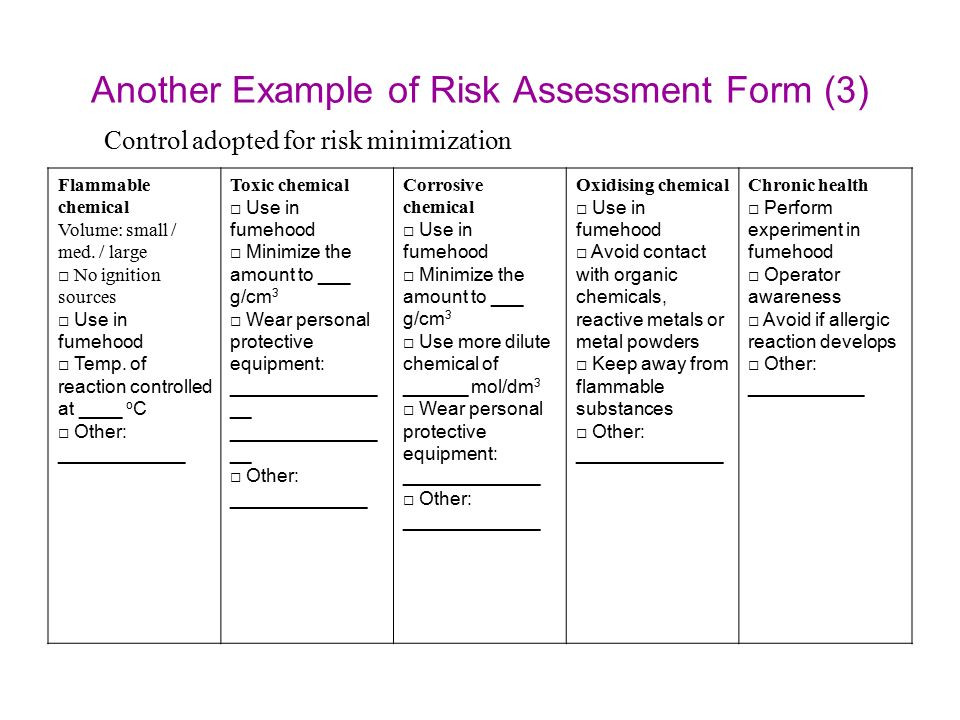 Risk Assessment Example  BesikEightyCo