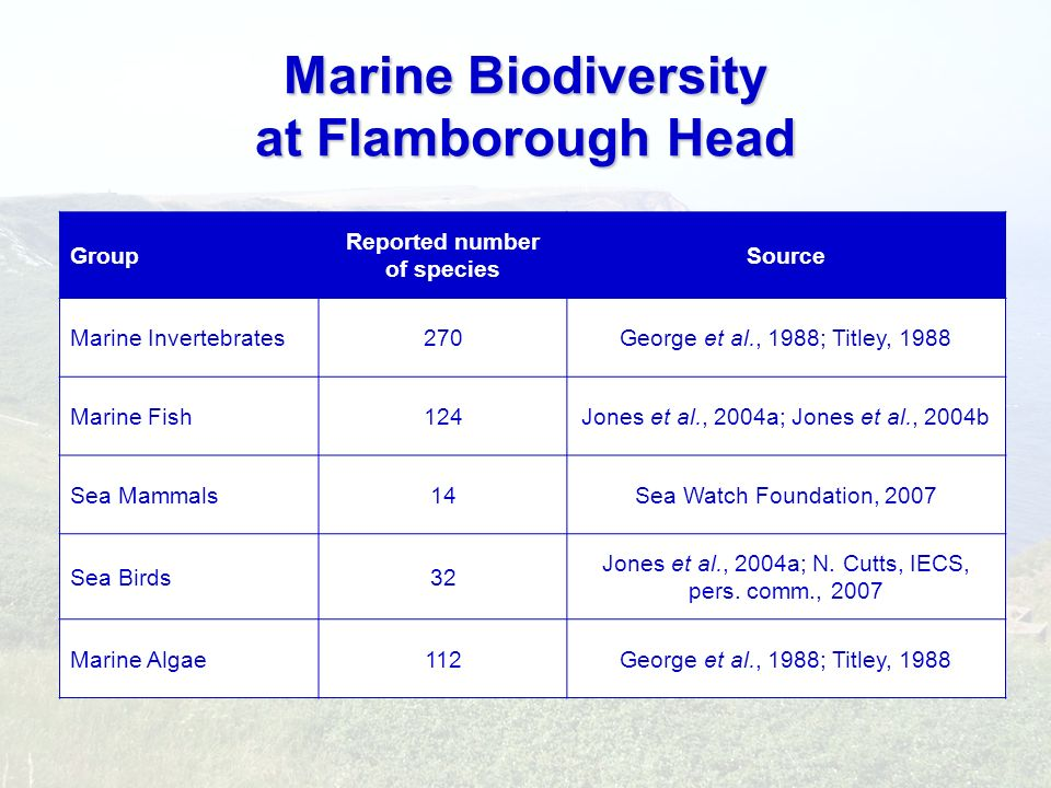 Marine Biodiversity at Flamborough Head