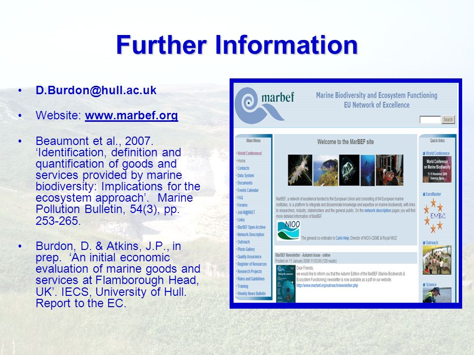 Further Information D.Burdon@hull.ac.uk Website: www.marbef.org