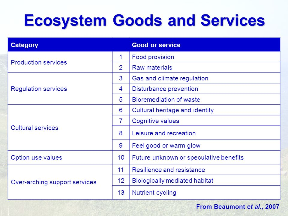 Ecosystem Goods and Services