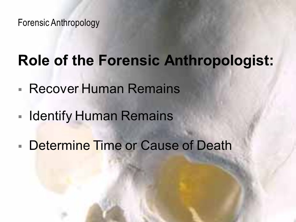 forensic human remains Human remains are frequently exhumed by law enforcement officers or cemetery workers unskilled in the techniques of forensic anthropology.