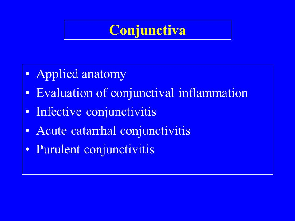 Conjunctiva Applied Anatomy Evaluation Of Conjunctival Inflammation