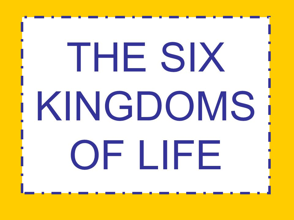 The Six Kingdoms of Life ppt video online download – Six Kingdoms Worksheet