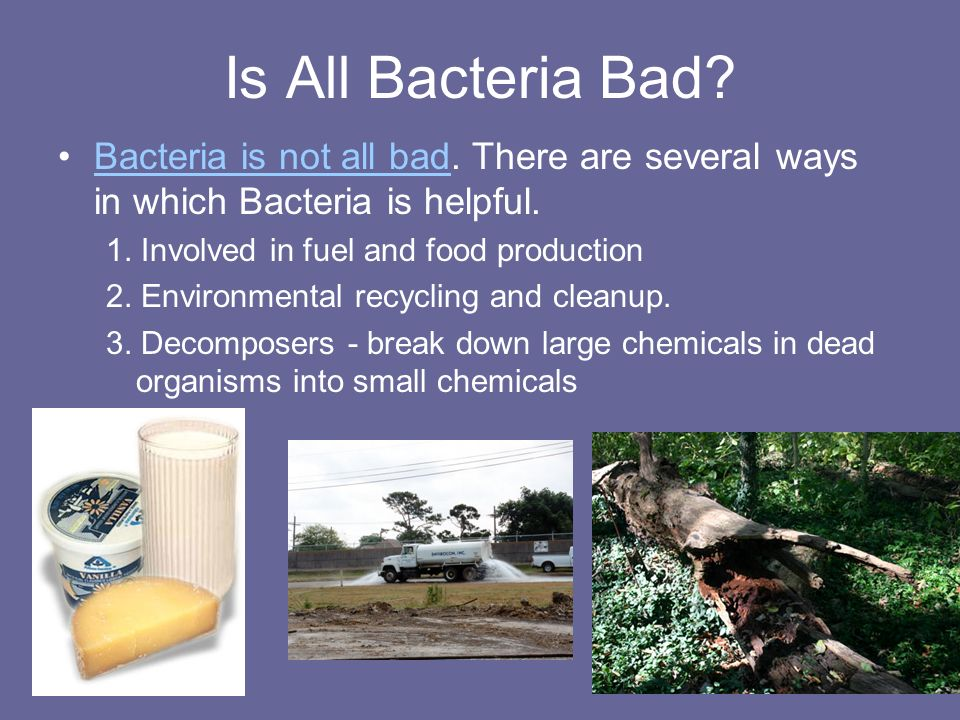 Is All Bacteria Bad Bacteria is not all bad. There are several ways in which Bacteria is helpful. 1. Involved in fuel and food production.