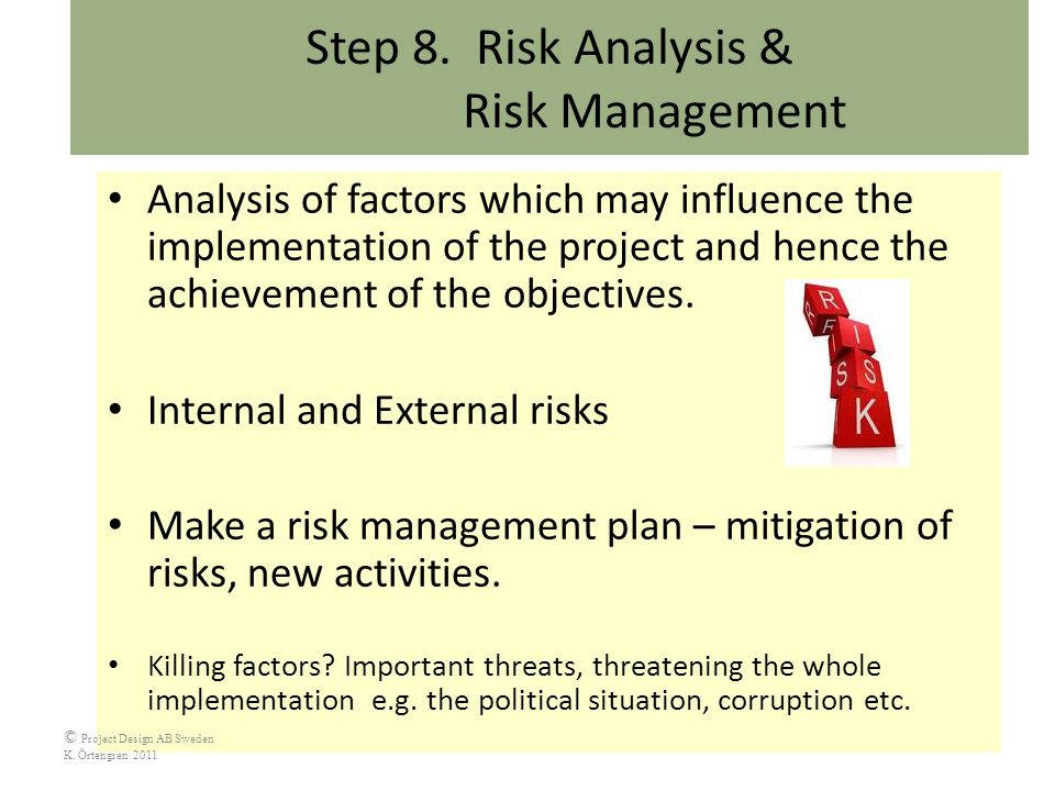 What factors influence project risk