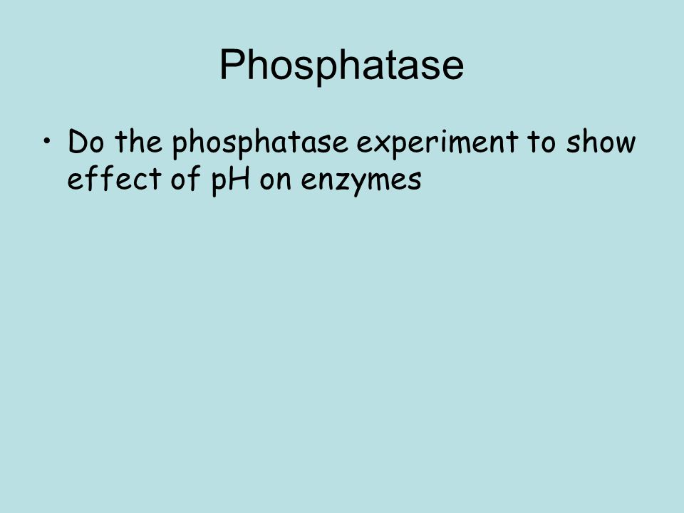 effects of substrate concentration on alkaline phosphatase activity Alkaline phosphatase-catalyzed phenolphthalein monophosphate hydrolysis by  is the substrate concentration at  the activity of alkaline phosphatase in the.
