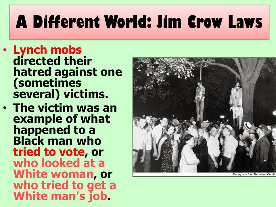 an introduction to jim crow laws in alabama Unlike most editing & proofreading services, we edit for everything: grammar, spelling, punctuation, idea flow, sentence structure, & more get started now.