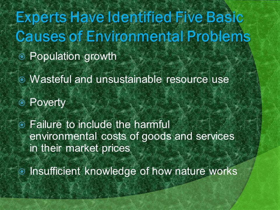 causes of environmental problems pdf