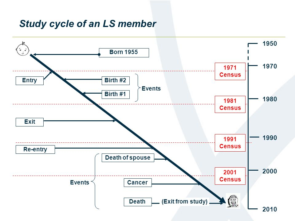 Study cycle of an LS member
