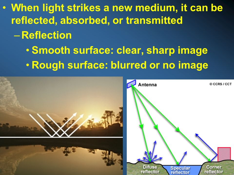 When light strikes a new medium, it can be reflected, absorbed, or transmitted