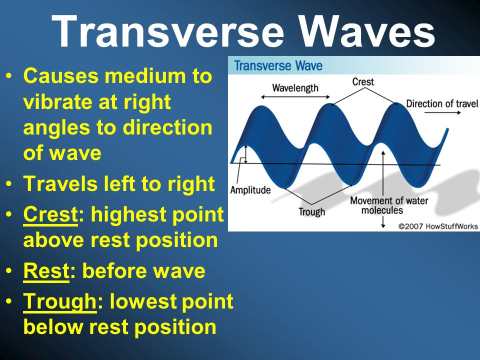 Transverse Waves Causes medium to vibrate at right angles to direction of wave. Travels left to right.