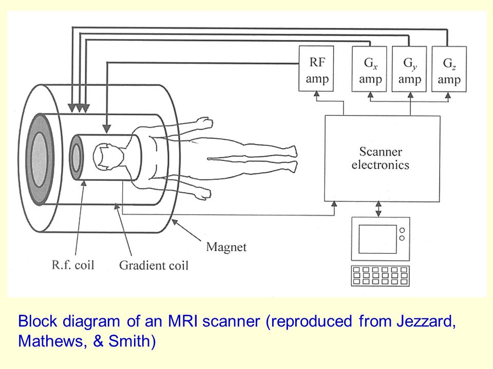 block diagram of mri machine brain imaging using fsl - ppt download