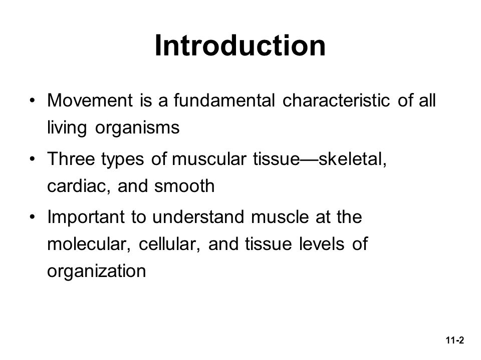 Introduction Movement is a fundamental characteristic of all living organisms. Three types of muscular tissue—skeletal, cardiac, and smooth.