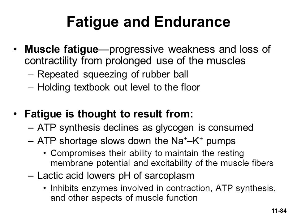 Fatigue and Endurance Muscle fatigue—progressive weakness and loss of contractility from prolonged use of the muscles.