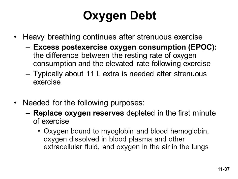 Oxygen Debt Heavy breathing continues after strenuous exercise