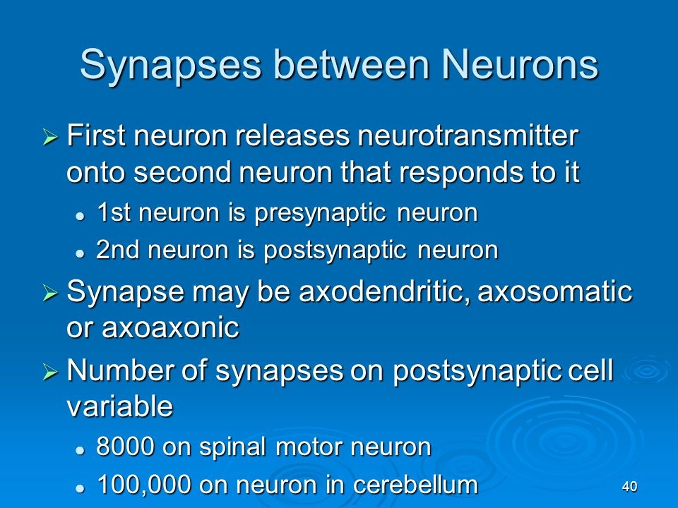 relationship between neurons and neurotransmitters