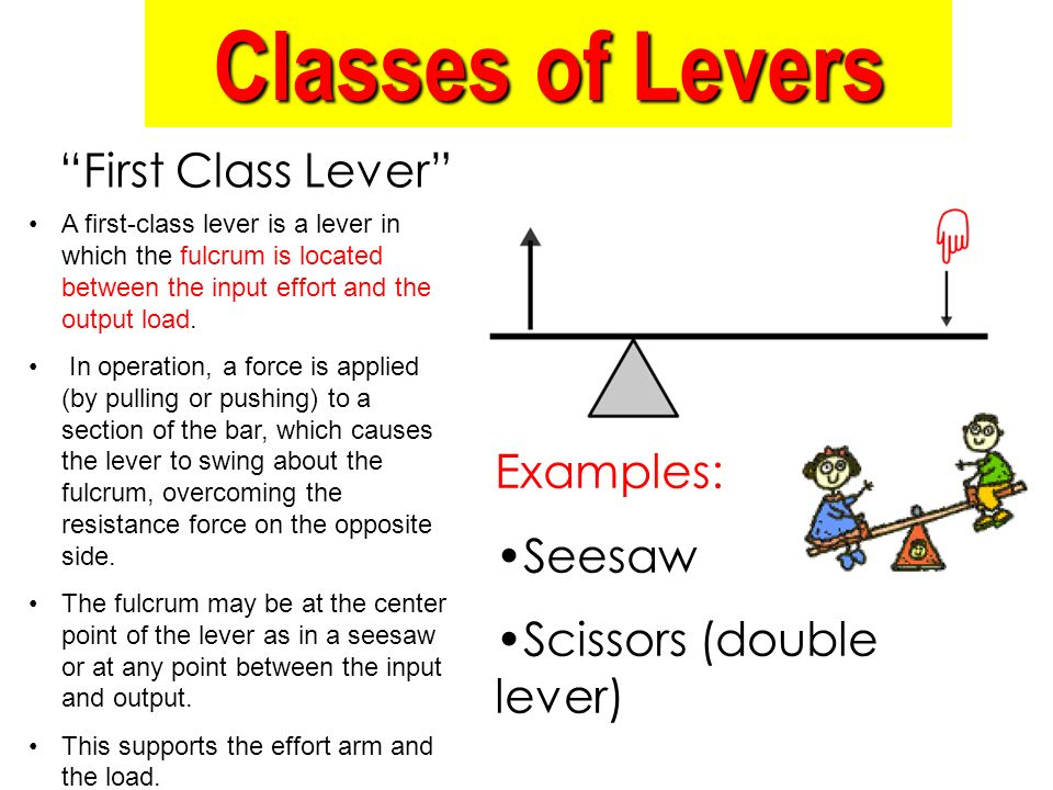 Examples Of Levers : Energy work and simple machines ppt download