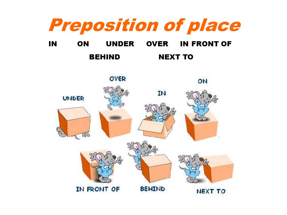 Preposition Of Place Ppt Video Online Download - Next to preposition