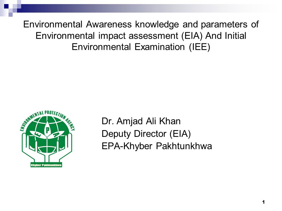 initial environmental examination report
